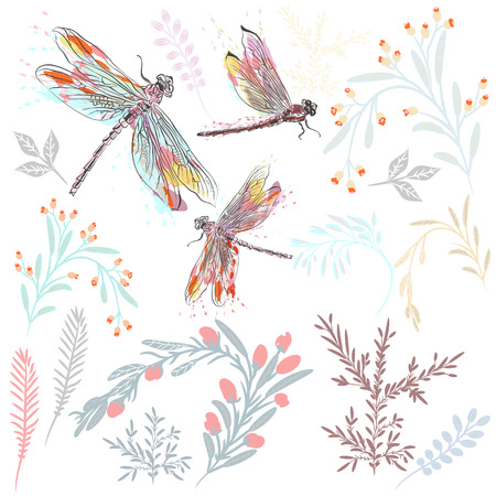 Beautiful collection of vector spring florals and dragonfly