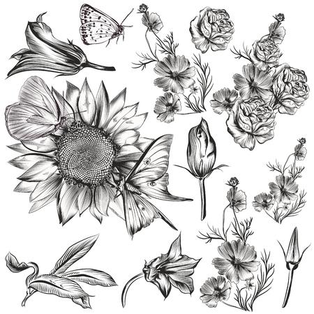 Set of vector hand drawn flowers 向量圖像
