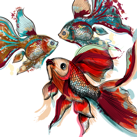 Beautiful vector hand drawn goldfishes in  watercolor style