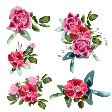 Collection of vector rose flowers for design