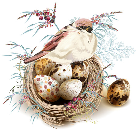 Easter vector background with realistic bird and  nest eggs, florals for design Ilustração