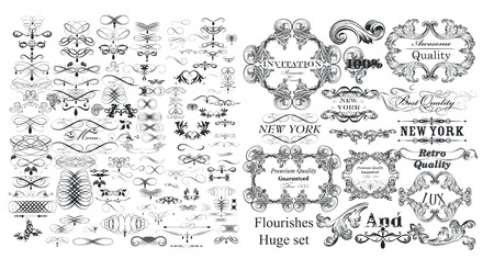 Grote verzameling vectorbloeiers en kalligrafische elementen in vintage stijl