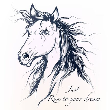 Hand drawn vector horse in detailed style