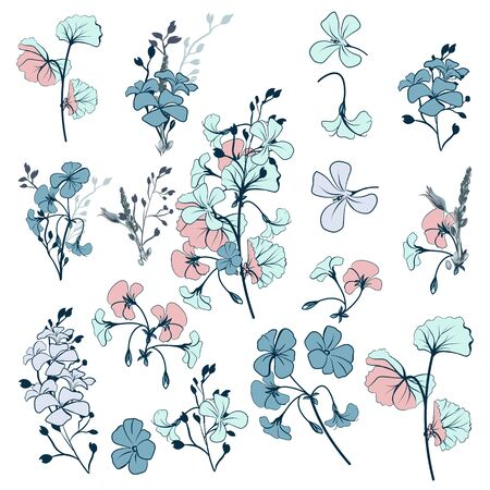 Collection of vector geranium flowers for design