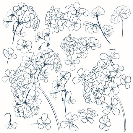 Set of vector flower shapes for design