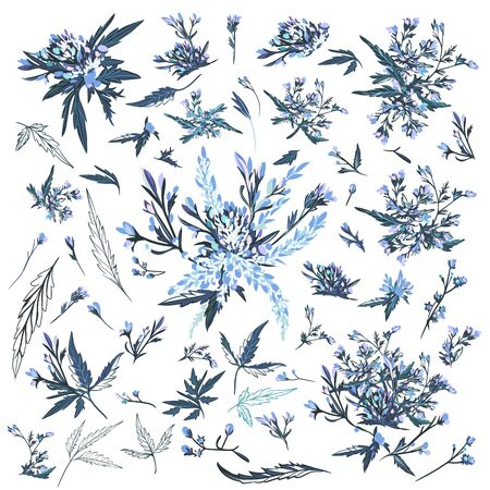 Set of vector elegant drawn field plants and flowers for design