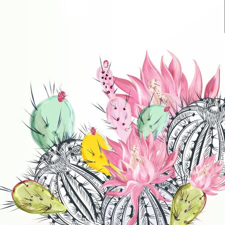 Beautiful vector illustration with cactus plants and flowers