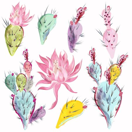 Collection of beautiful vector cactus flowers in watercolor style