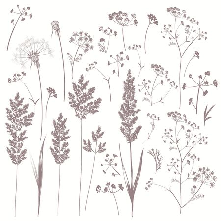 Collection of vector field plants in vintage style