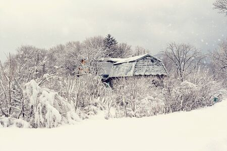 Snowy winter landscape with snow, trees and village house