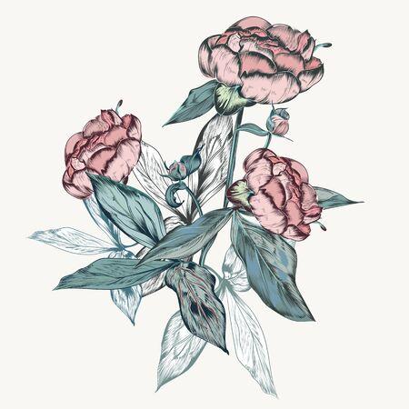Botanical vector vintage illustration in retro style for design 일러스트