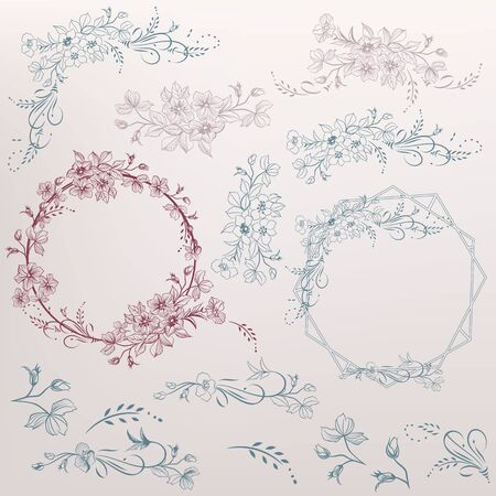 Collection of vector swirl elements and flourishes for design