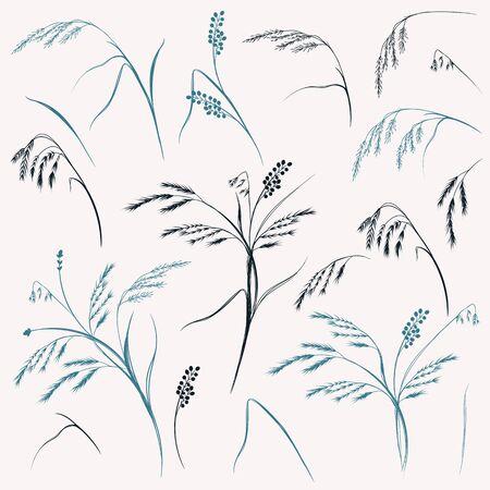 Set of vector elegant field glass, plants for design 일러스트
