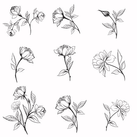 Set of vector elegant line flowers for logotypes designs, weddings, cards and other 일러스트