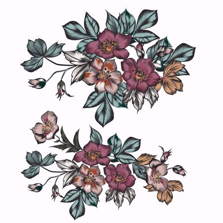 Collection of vector flowers in beautiful antique style for design