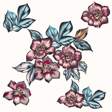 Set of vector hand drawn flowers for design