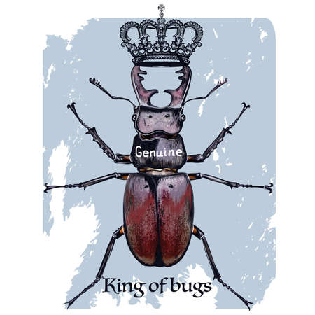 Beautiful fashion illustration with deer beetle and crown