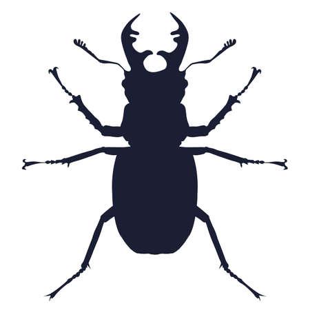 Vector detailed silhouette of deer beetle