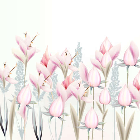 Illustration with gentle vector pink crocus flowers, spring style
