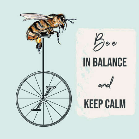 Fashion apparel print bee on bicycle. Be in balance, keep calm