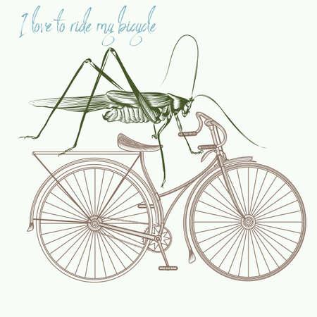 Fashion apparel print grasshopper on bicycle. I love to ride