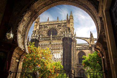 Sevilla, Spain. Church in Sevilla and Seville Cathedral, Giralda tower, orange trees