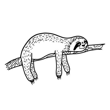 Lazy hand drawn sloth sleeping on a tree branch. Hand drawn, doodle style. Cute funny vector illustration for print, poster, apparel, t-shirt. Black lineart isolated on white background