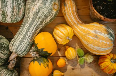 Assorted whole pumpkins. Nature food Stock Photo