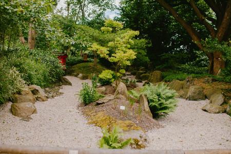 view of the Botanical Garden
