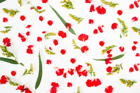 floral pattern of red petals, leaves on a white background