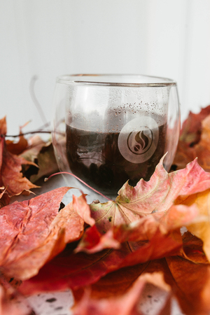 A cup of coffee and the autumn leaves on a white background Banque d'images
