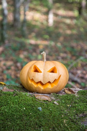 Traditional Halloween decoration Jack o lantern pumpkin on background of autumn trees