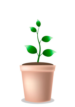 Young growing five-leaf plant in a pot - eps10 vector illustration