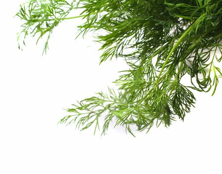 relieve: Dill (Anethum graveolens L.) The name dill is probably related to Old Norse dilla �calm�, �soothe�; it has been suggested that dill was used to relieve stomach pain in babies (due to its antiflatulent power) and thereby �soothed� them.
