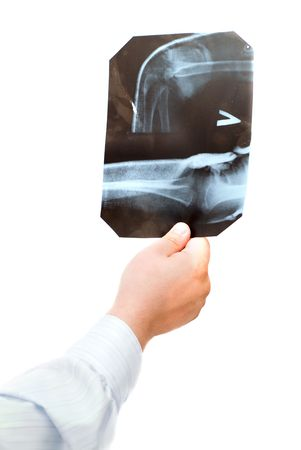 Doctor examining x-ray scans against white background Stock Photo - 1018013