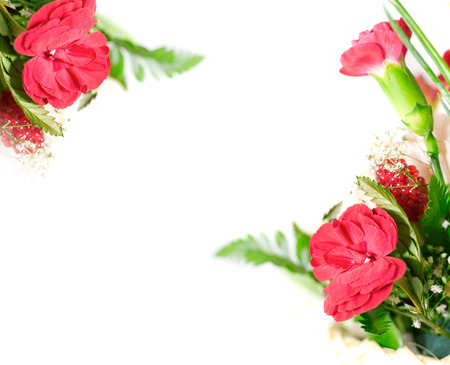 floral design elements. isolated photo