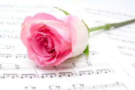 Pink rose on a musical sheet. photo