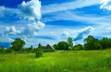 summer landscape background Stock Photo - 3247132