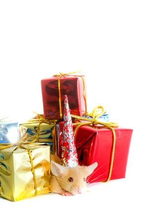 prying: mouse with gift boxes Stock Photo