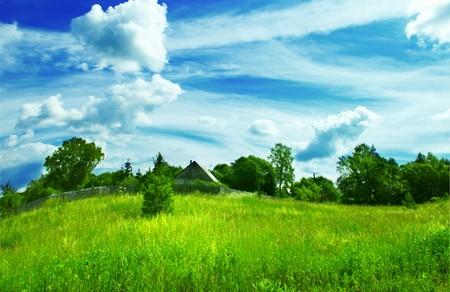 summer landscape background Stock Photo - 4012404