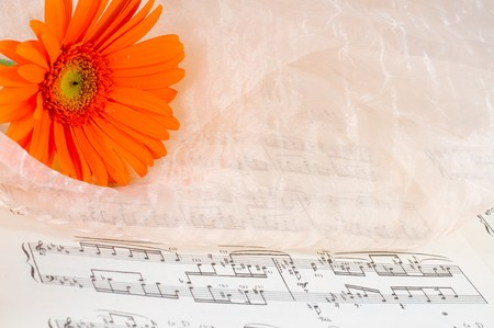 romanticism: Notes with a beautiful flower. Romanticism Stock Photo
