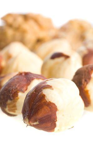 filbert: Nuts a filbert