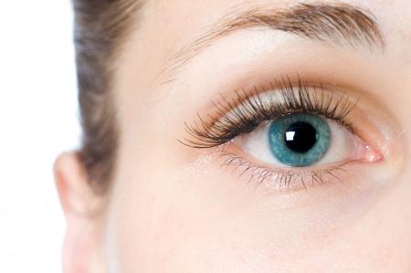 cejas: macro ojo hermosa mujer