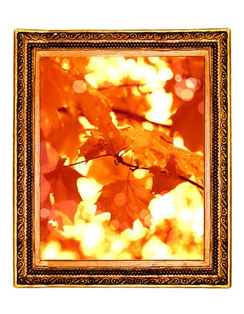 leaf Framework in antique style  photo