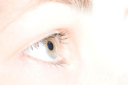macro beautiful female eye Stock Photo - 5814520