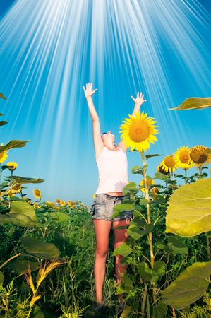 girl with a sunflower photo