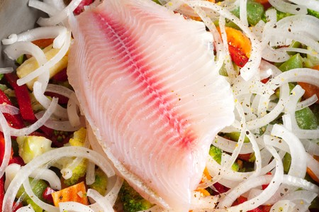 tilapia: Fish fresh fillet tilapia Stock Photo