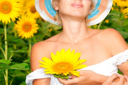 sunflower with beauty  woman hand photo