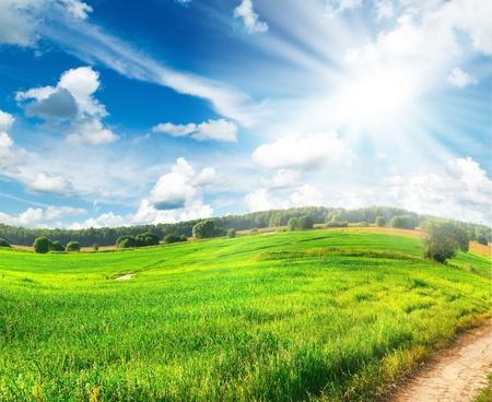 Paysage d'? avec l'herbe verte, la route et les nuages