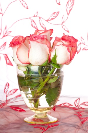 bouquet of pink roses in vase photo